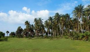 Kalpitiya Lagoon Paradise