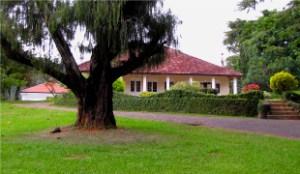 Property & Land Sales
