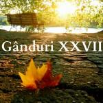 Gânduri XXVII