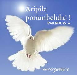 Psalmul 55.6, Aripile porumbelului