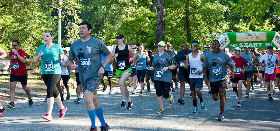 CFA10k5k_SliderImages__0003_Partners-1-