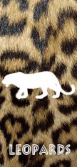 Leopard Residents
