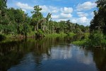 Hardee County - Paynes Creek Historic State Park