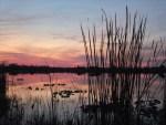 Okeechobee County - Lake Okeechobee at Twilight