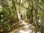 Polk County - Mountain Biking at Loyce Harpe Park