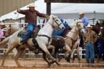Arcadia - Rodeo