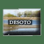 DeSoto County, Florida