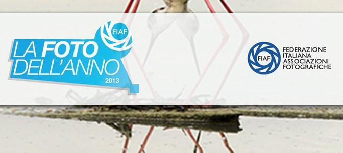Foto dell'Anno 2013 FIAF<br>  Rassegna di Autori vari
