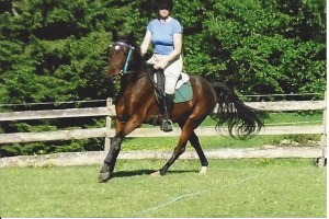 cantering photo