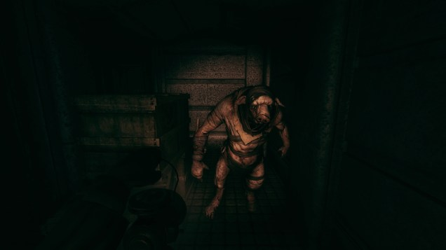 What is Amnesia: A Machine for Pigs Saying to Players? - 2014-10-30 11:45:59