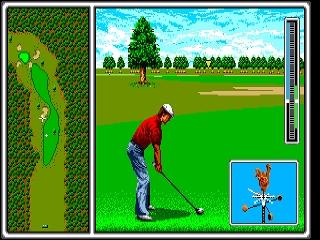Developer:Sega Publisher:Sega Genre:Sports/Golf Released:12/31/1989 Rating: 3.5