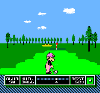 Developer: Nintendo Publisher: Nintendo Genre: Sports/Golf Released: September 1, 1991 Rating: 4.5
