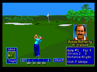 Developer: Polygames Publisher: Electronic Arts Genre: Sports/Golf Released: 1994 Rating: 4.5