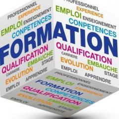 La réforme  de la formation professionnelle