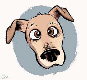 Dog behaviourism