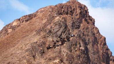 Photo of Le mont Uhud : un monument historique et religieux important