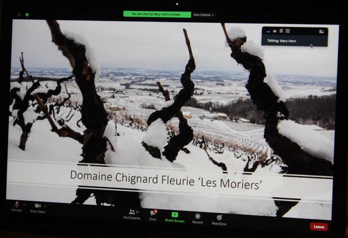 Domaine Chignard Fleurie Les Moriers vineyards