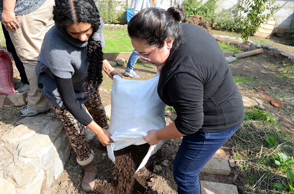 Incorporando compost