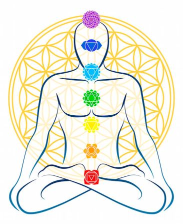 The Chakras. Solar Plexus is the Yellow wheel in the core of the body
