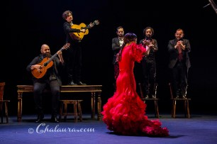 olga-pericet-bienal-2018-chalaura-la-gafa-08