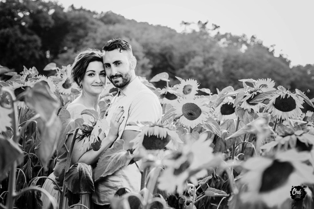 photo de couple dans les tournesols