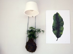 Place botanical art and real plants side by side to create texture, interest, and to draw the eye around the room. Both real and visual references to nature help improve our wellbeing, according to biophilia and biophilic design. Read more about this on Chalk & Moss (chalkandmoss.com). The Banana Leaf plant print is by Dollybirds Art, available in the Chalk & Moss online shop.