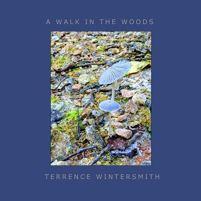 terrance-wintersmith-cd