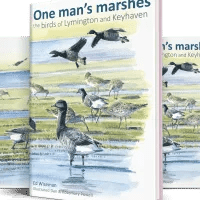One man's marshes