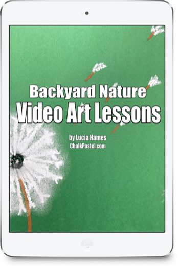 Backyard Nature Video Art Lessons