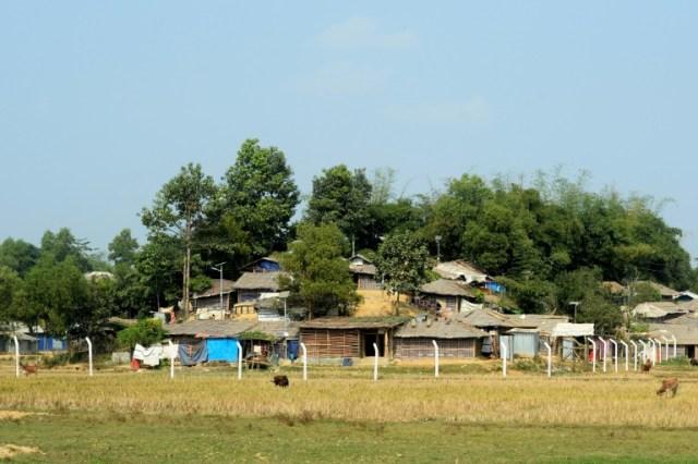 Des piliers plantés en terre qui vont servir à ériger des barrières de barbelés autour du camp de réfugiés de Balukhali, le 10 décembre 2019 à Ukhia, au Bangladesh (AFP - MUNIR UZ ZAMAN)