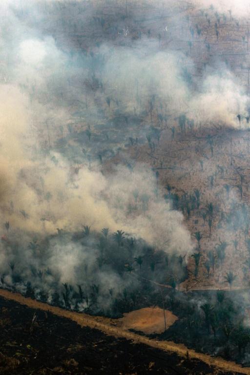 Vue aérienne de la forêt amazonienne après un incendie aux environs de Boca do Acre au Nord-ouest du Brésil de 24 août 2019 (AFP - LULA SAMPAIO)