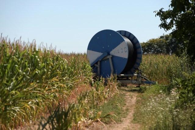 Système d'irrigation dans un champ de maïs à Chevannes le 7 août 2020 (AFP - ERIC PIERMONT)