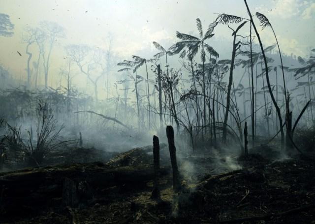 Incendie en Amazonie le 16 août 2020 au sud de Novo Progresso, Etat de Para, au Brésil (AFP/Archives - Carl DE SOUZA)