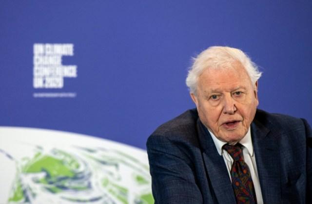 Le militant écologique britannique David Attenborough à Londres, le 4 février 2020 (POOL/AFP - Chris J Ratcliffe)