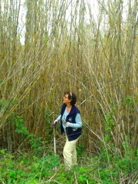 agrotourism-nature-finikounda-activities