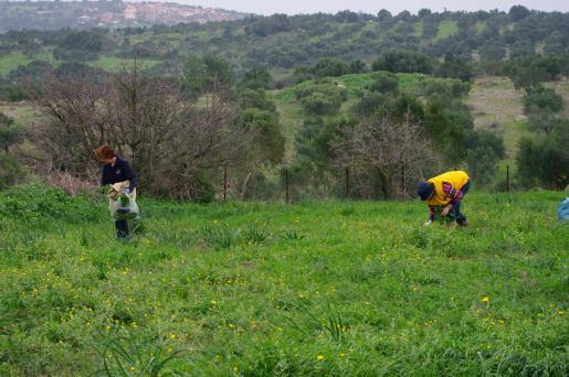 finikounda-chamaloni-agrotourism-6