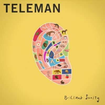Teleman_Brilliant_Sanity_chameleon
