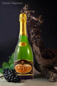 Champagne Mannoury cuvees brut millésimé