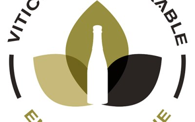 2019, certification en Viticulture Durable en Champagne