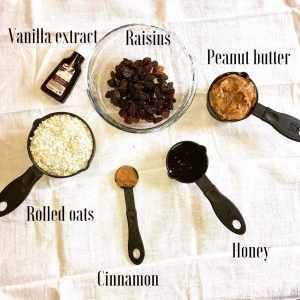 Healthy Oatmeal Raisin Energy Bites