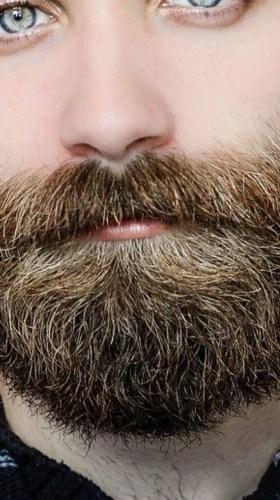 Fit Fella Hair Growth & Beard Blend photo review