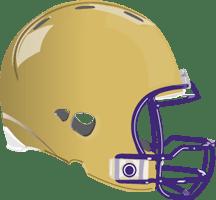 Image result for alcorn state football helmet