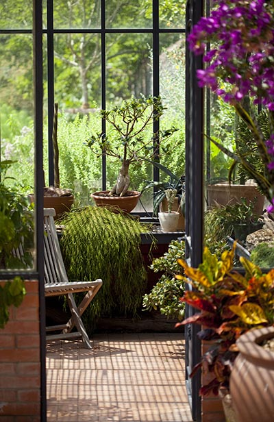 Sunrooms Picking The Perfect Plants For Your Sunroom