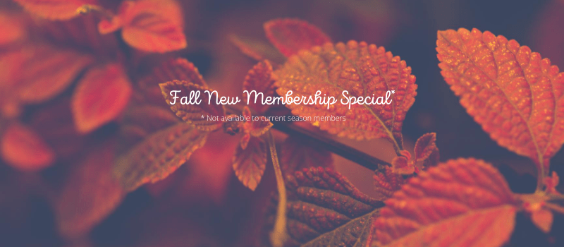 Fall New Membership Special