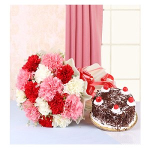 CF Mix Carnations with Cake