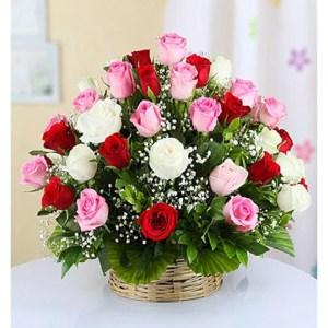 CF Perfect Colorful Roses