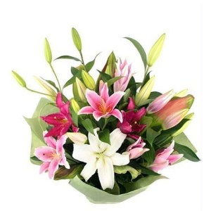 CF 7 Pink and White lilies