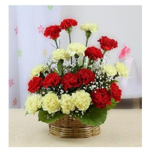 CF Red & Yellow Carnations