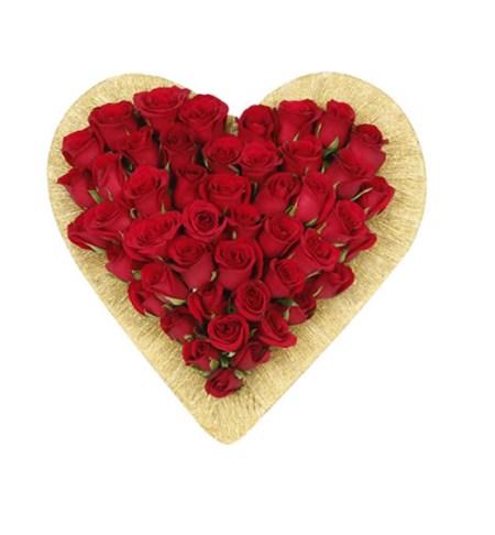 CF Roses Show