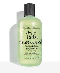 Seaweed shampoo 8.5 fl oz bottle